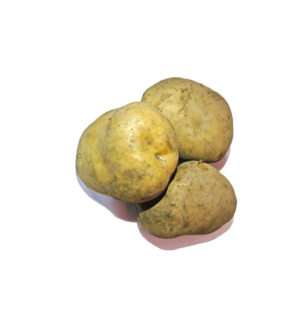 Comprar Patata Gallega calidad Gourmet